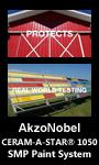 akzonobel-pagetop-june-2021